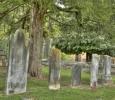 Interesting Graves